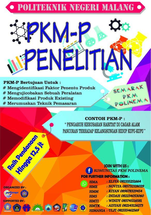 PKM P